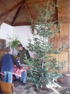 Hely kell a karácsonyfának (December 18.)