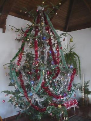 Teljes pompájában a gyülekezet fája