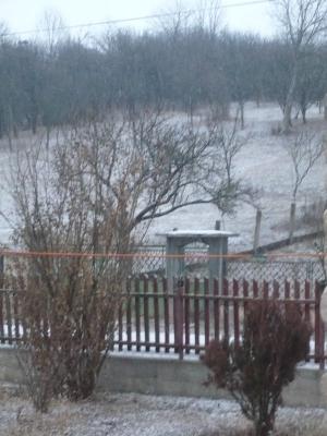 Megérkezett az első hó is...(December 20.)