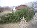 Megérkezett a falufa (November 29.)